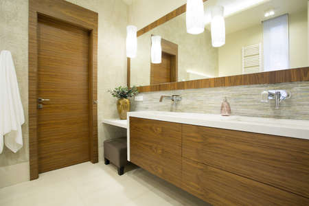 Modern toilet interior with wooden door and furniture photo