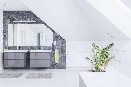 Horizontal view of modern exclusive bathroom design