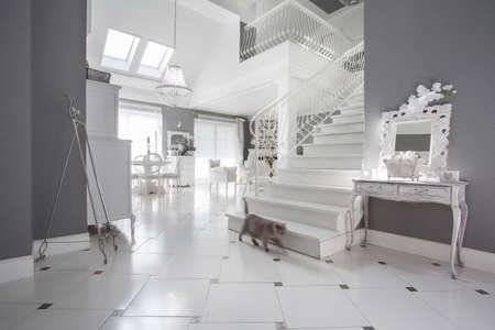 elegant staircase: View of white and grey expensive interior Stock Photo