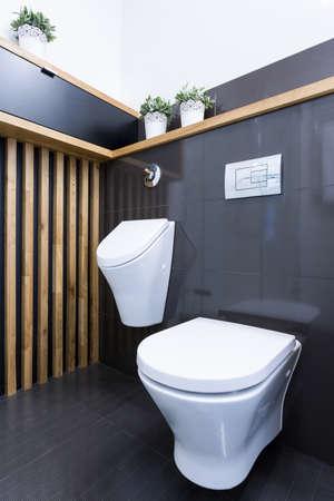 Beauty luxury toilet interior in modern apartment