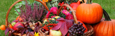 Fall fruits and vegetables in wicker basket photo
