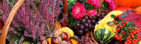 Autumn flowers, vegetables and fruits in basket