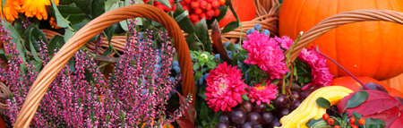 Autumn flowers and fruits in wicker basket photo