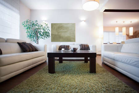 a small house: Small coffee table in modern cozy living room Stock Photo