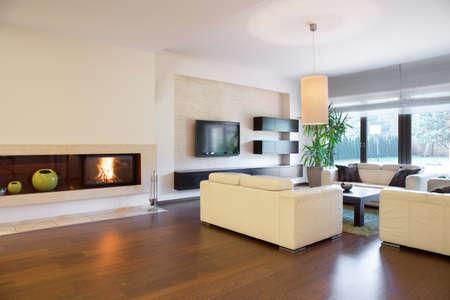 照明付きの暖炉のある広々 とした居心地の良いリビング ルーム