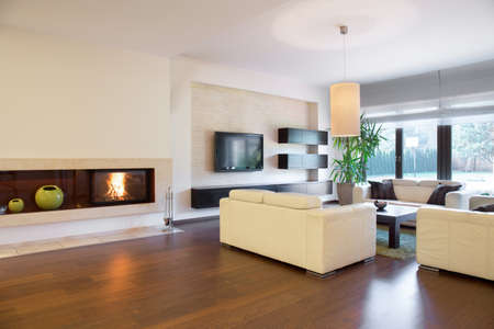 Spacious cozy living room with lighted fireplace Banque d'images