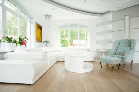 Luxury bright spacious living room
