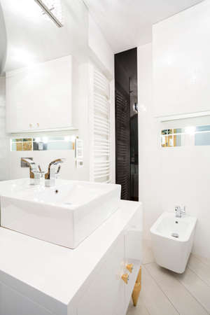 Interior of white bathroom with porcelain elements photo