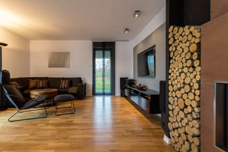 cosy: Cosy and elegant living room with fireplace