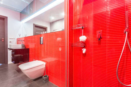 Closeup of bathroom shower with modern red tiles photo