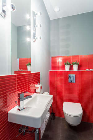 bowl sink: Red toilet with bowl and sink