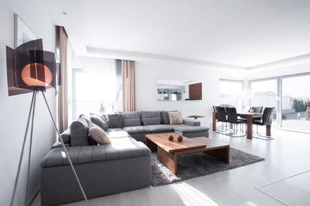 living room design: Contemporary sitting room with gray corner sofa