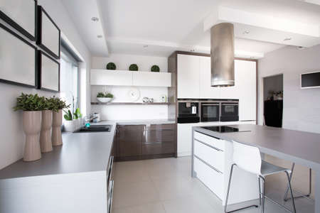 Houseplants in exclusive kitchen in modern style Standard-Bild