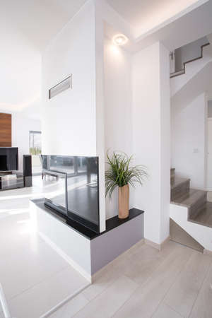 anteroom: Vertical view of designed fireplace in contemporary apartment