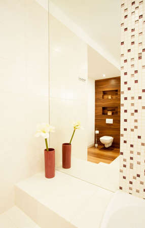 esthetic: Esthetic design of new modern bathroom
