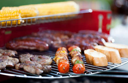 frazzled: Closeup of tasty food on barbecue party