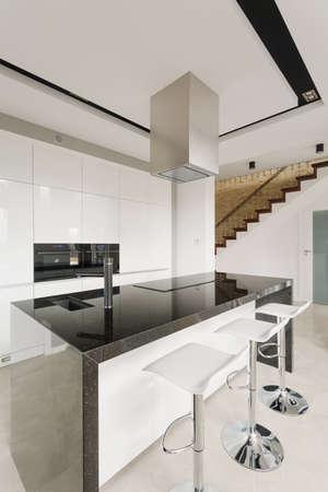 Black and white stylish kitchen in luxury residence photo
