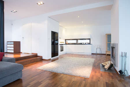 family rooms: Enormous bright family room with cooking space