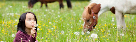 panoramic nature: Little Asian girl in the park and horses in background