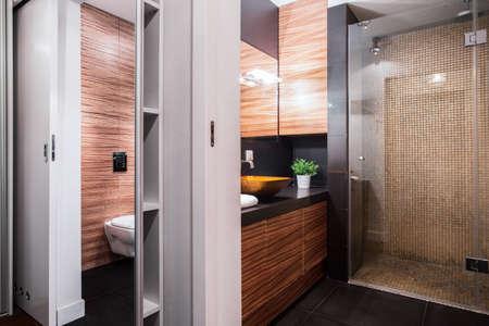 luxury apartment: Luxury restroom interior in elegant modern apartment