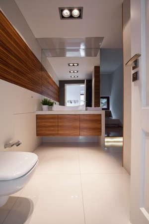handbasin: Vertical view of elegant clean toilet interior