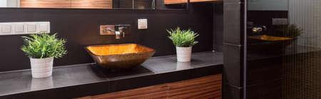 flowerpots: Illuminated washbowl and flowerpots in luxury bathroom