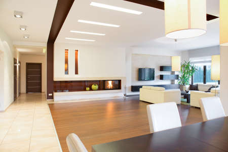 Modern parter house with open space