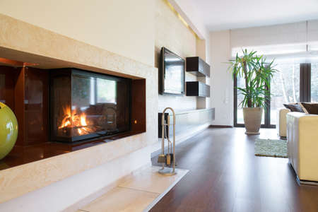 parter: Fireplace at elegant apartment