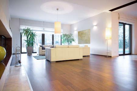 Stylish bright living room with wooden parquet Standard-Bild