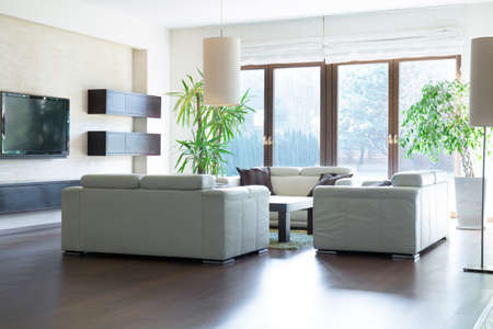 room decoration: Spacious living room with exit to the garden
