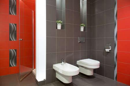 bidet: Elegant restroom with ceramic toilet and bidet