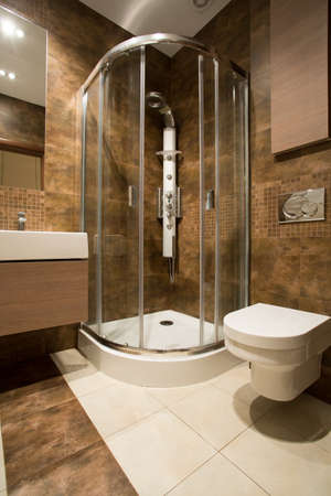 douche: Glass douche and ceramic toilet in luxury bathroom