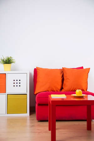 Red couch in color teenager bedroom interior