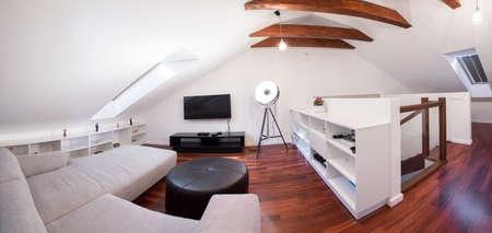 Panoramic view of luxury living room interior 版權商用圖片