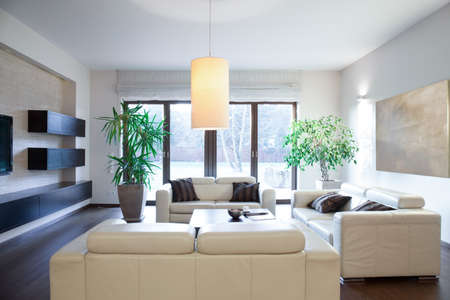 parter: Bright cozy apartment with stylish sofas