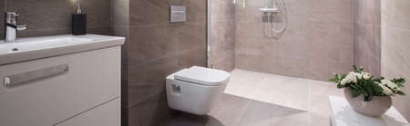 Panoramic view of beige elegant washroom interior