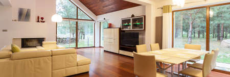 Bright living room with the view at the garden Foto de archivo