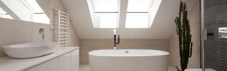 bowl sink: Panoramic view of white elegant bathroom with modern bath