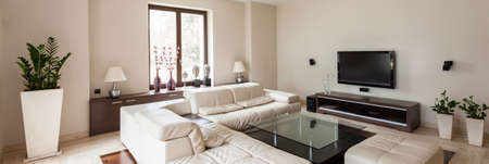 Panoramic view of modern and elegant living room interior Foto de archivo