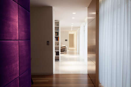 Violet wall in modern hallway with wooden floor Stock Photo