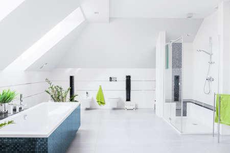 bathroom tile: Exclusive bright bathroom with white marble floor and inclined wall