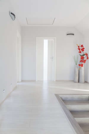 anteroom: White simple corridor with floral decorations in home staircase