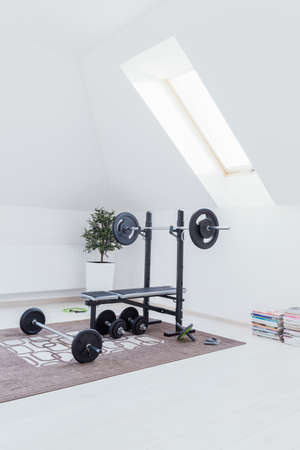 domestics: Small home gym with bench with dumbbells