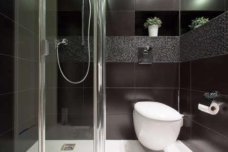 トイレで黒いタイルの水平方向のビュー