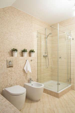 Petite salle de bains contemporaine avec douche avec porte en verre Banque d'images - 40551717