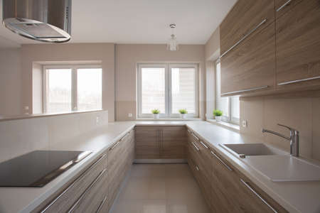 units: Photo of bright modern kitchen with wooden units