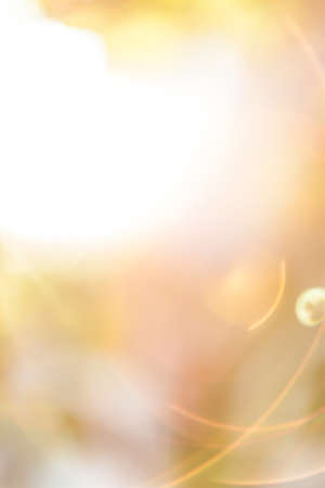 Sunny blurred abstract background - yellow and orange colors