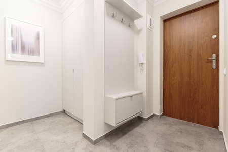front entry: White empty anteroom with wooden front door