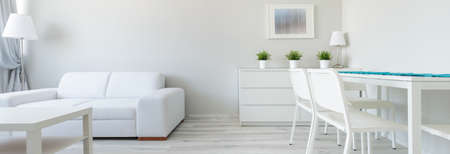 apartment interior: Panorama of white interior in minimalist design