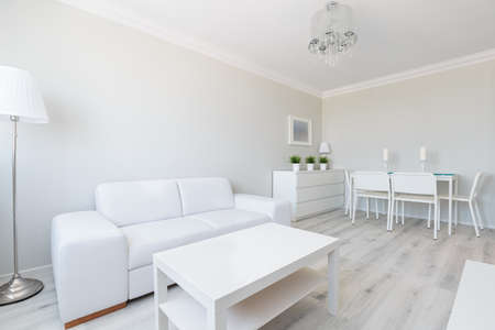 Horizontal view of white studio apartment interior